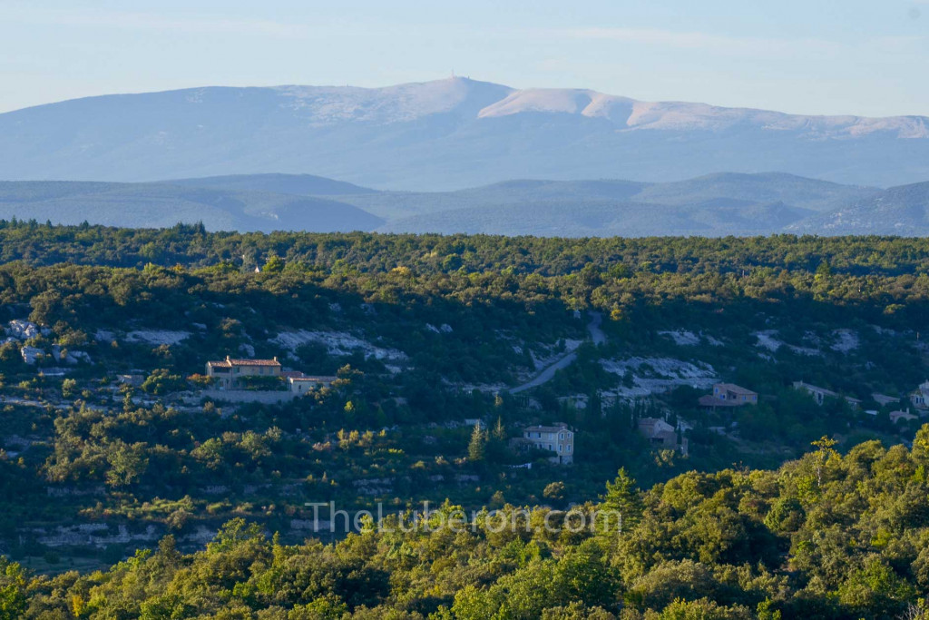Mt Ventoux from Buoux fort