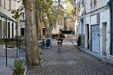 Cyclist in Avignon street