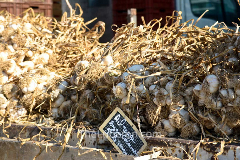 Garlic for sale at Coustellet farmers' market
