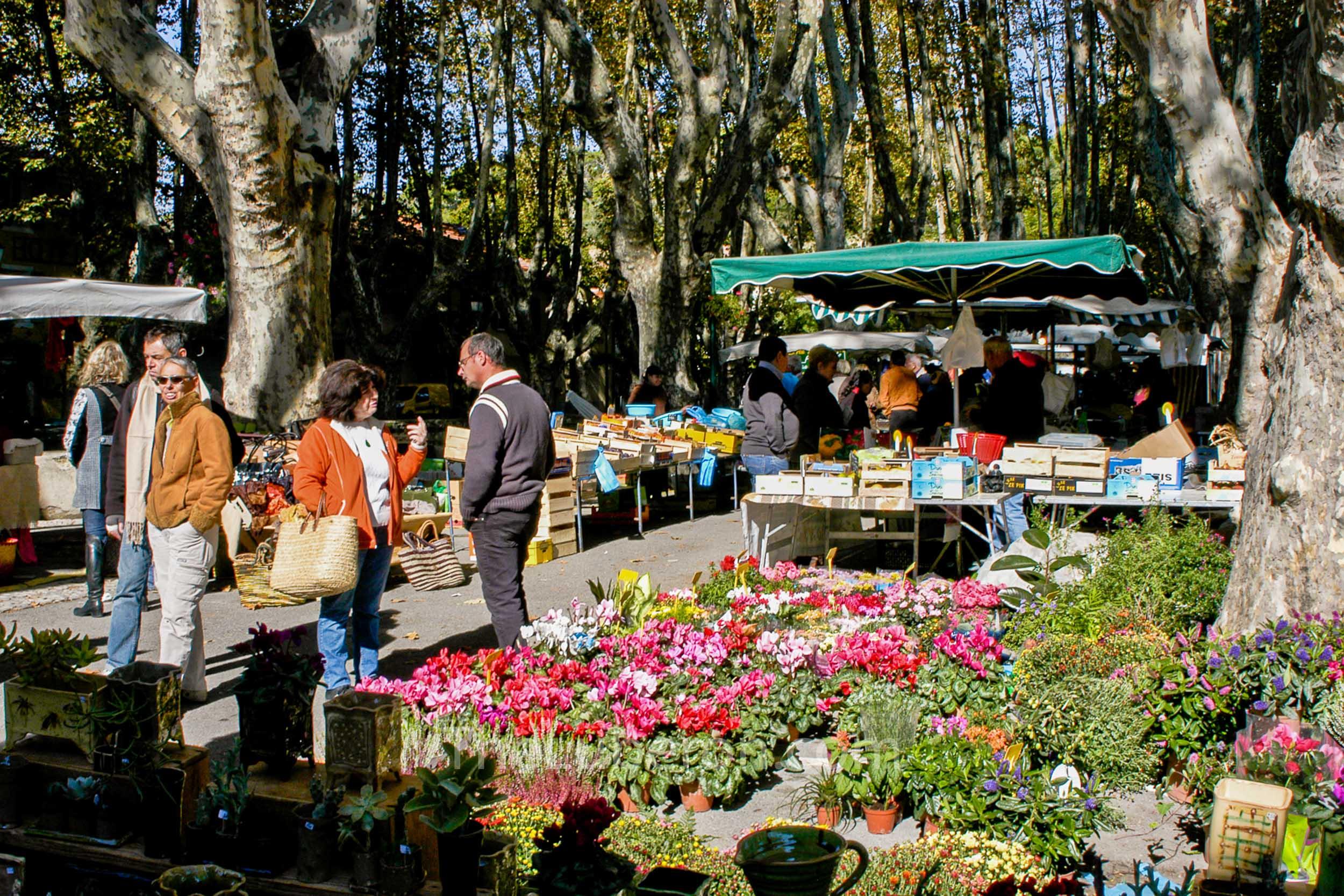 Flowers at Cucuron market