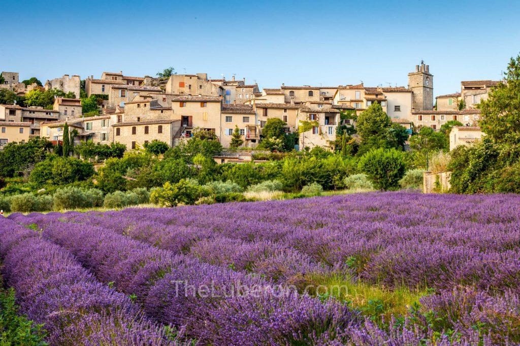 Lavender field and Saignon