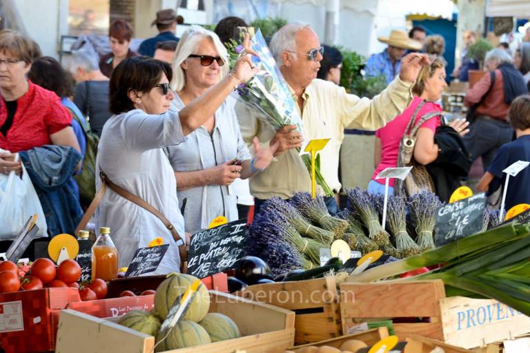 St-Remy market scene