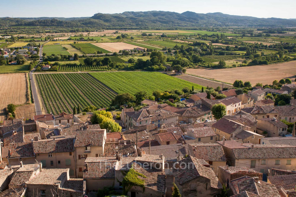 view from top of village over vineyards