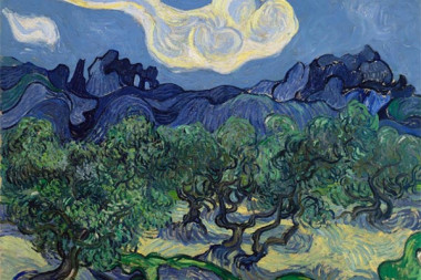 """""""Olive Trees with the Alpilles in the Background"""""""