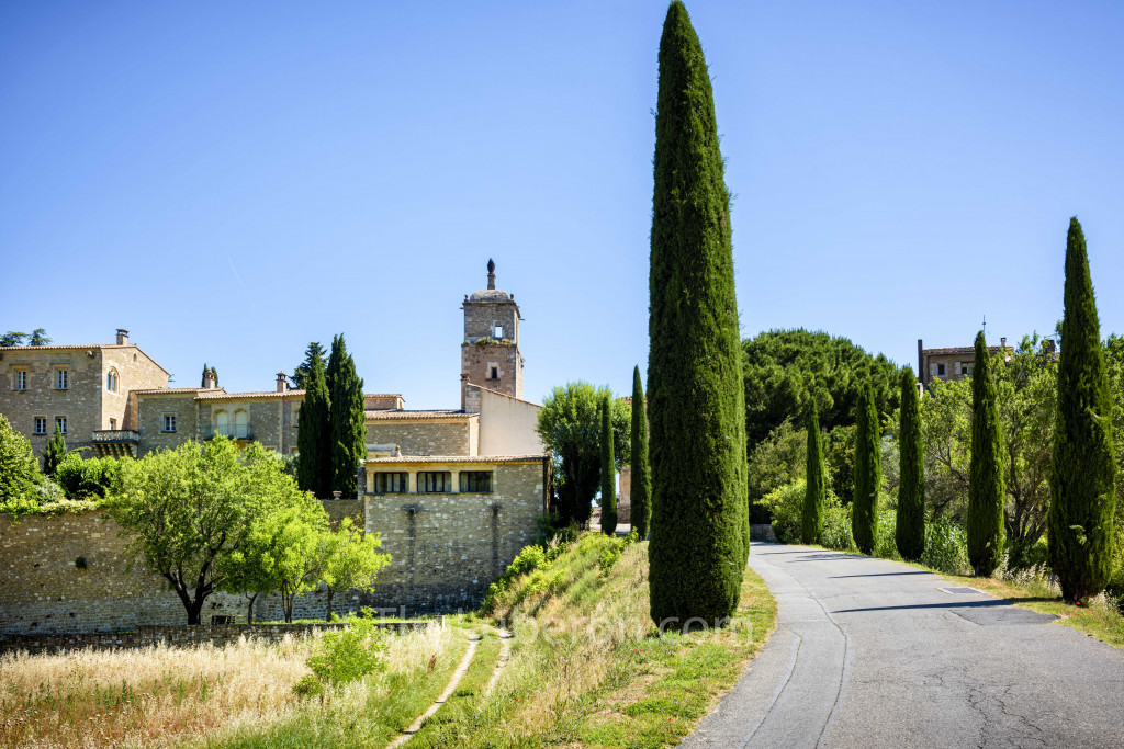 village with cypress trees