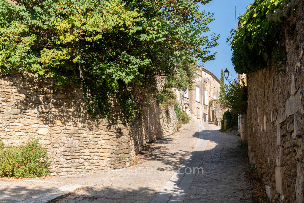 village road with cobbles